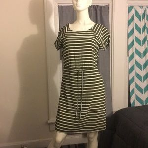 White and Olive stripe dress